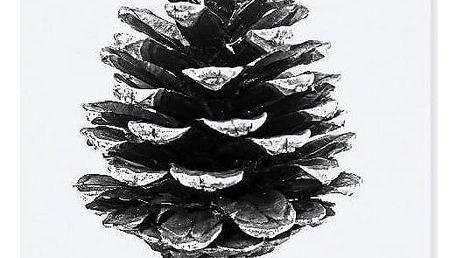 TAFELGUT Pohlednice Pinecone 12x17,5 cm, černá barva, bílá barva, papír
