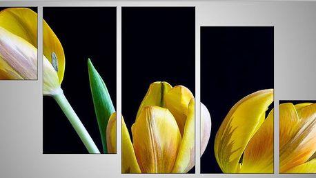 Pětidílný obraz 150x68 (2x30x40,2x30x60,30x68)