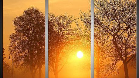 Třídílný obraz 90x60 (3x 30x60)