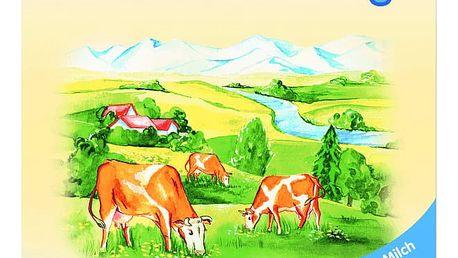 HOLLE Baby Bio Mléčná výživa 4