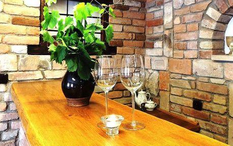 Penzion Vavříček na Moravě s degustací vína, snídaní a dítětem do 10 let zdarma