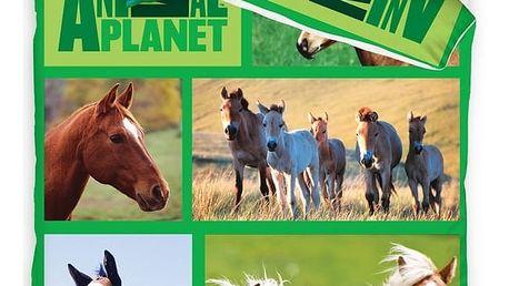 Carbotex povlečení Animal Planet - Koně na louce 140x200 70x80, 140 x 200 cm, 70 x 80 cm