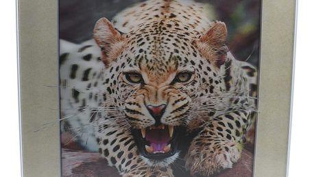 Tygr v ložnici - Lentikulární 3D obraz