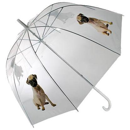 Hluboký Holový Deštník se Psem