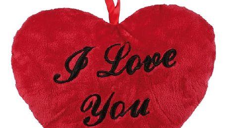Červený polštářek I Love You 26 cm