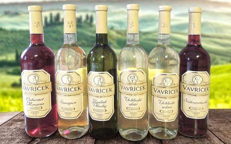 Výběr moravských vín z rodinného vinařství