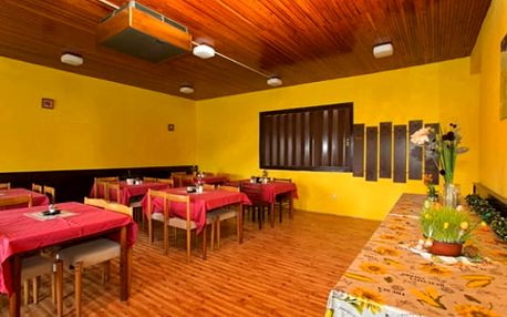Šumava, letní pobyt pro dva na 3-6 dní v 3* hotelu Salivar: polopenze, sauna