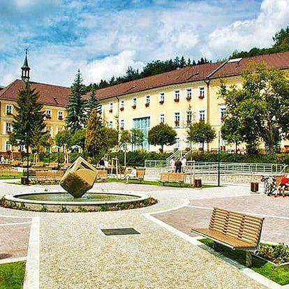 3 nebo 4denní pobyt pro 2 ve studiu nebo apartmánu v apartmánech Vlčice v Krkonoších
