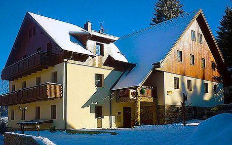 3 nebo 6denní pobyt pro 2 + 1 dítě do 15 let v penzionu Alpský dům na Šumavě