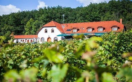 3denní gurmánský pobyt pro 2 s vínem a wellness v hotelu Sádek*** u Třebíče