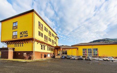 3 až 6denní pobyt pro 2 se snídaněmi a saunou v hotelu Zlatý Chlum*** v Jeseníkách