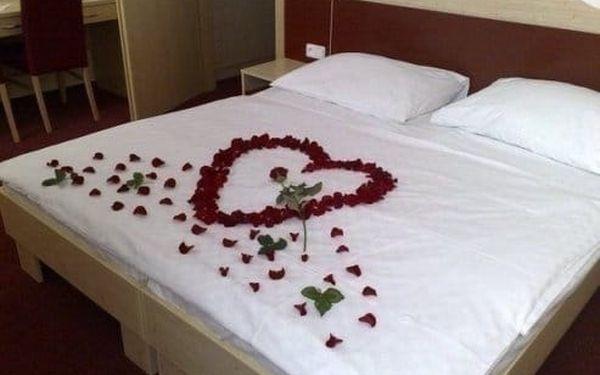 Hotel Iris***