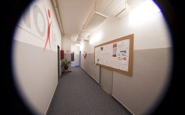 Moxie Pohybové studio
