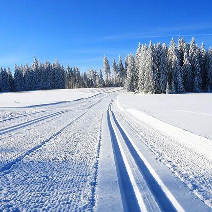 Zimní nebo jarní dovolená na Šumavě s polopenzí