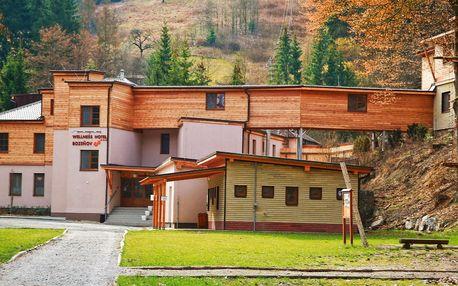 Wellness Hotel Bozeňov na Moravě s polopenzí + Valentýnský víkend