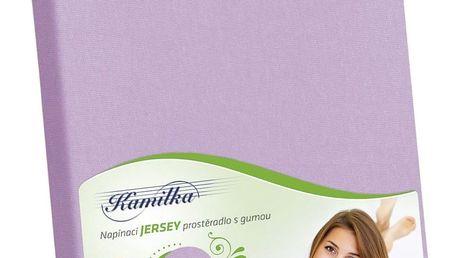 Bellatex Jersey prostěradlo Kamilka fialová, 160 x 200 cm