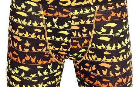 Pánské boxerky 69SLAM fit bamboo bird M