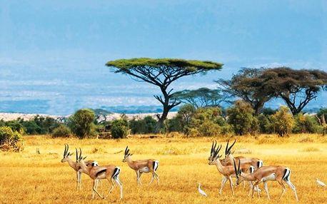 Keňa, letecky na 14 dní