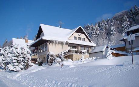 Pobyt v Hotelu Podlesí s prohlídkou Pohádkové vesničky