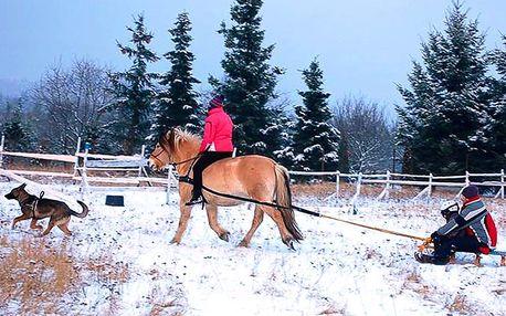 Skijöring: jízda za koněm na saních nebo lyžích