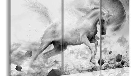 Obraz na plátně - Jednorožec na okraji světa 60x40 cm