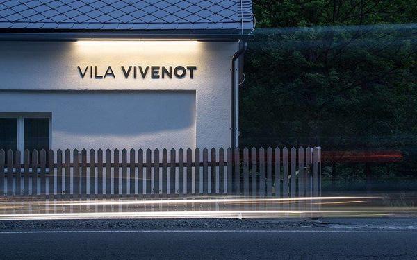 Vila Vivenot