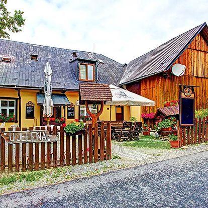 Jeseníky ve stylové chatě nedaleko Šumperku s polopenzí, saunou i děti do 14,99 let zdarma