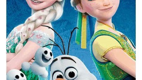 Jerry Fabrics Osuška Ledové království Frozen fever, 70 x 140 cm