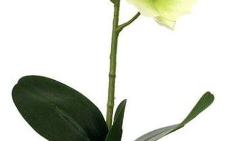 Umělá květina orchidea zelená, 39,5 cm, Autronic