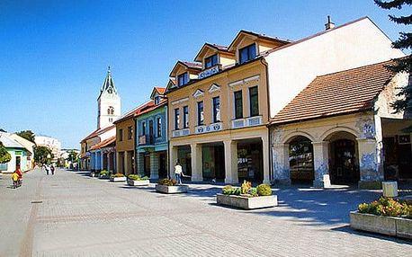 3–6denní pobyt i na Silvestra pro 2 s polopenzí v hotelu KNM*** na Slovensku