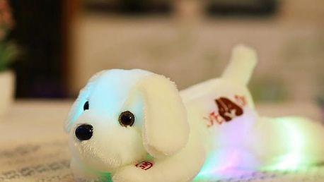 Plyšový LED pejsek - 35 cm - 4 barvy