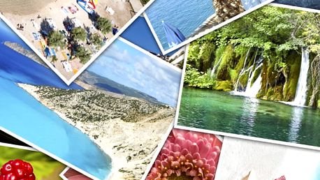 Kvalitní fotoobrazy z Vašich fotografií, tisknuté na kvalitní plátno nebo fotopapír.