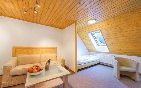 Špindlerův Mlýn na jaře pro dva + polopenze, bobová dráha, sauna