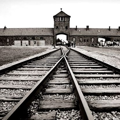 1denní zájezd pro 1 osobu do koncentračního tábora Osvětim a Březinka s prohlídkou