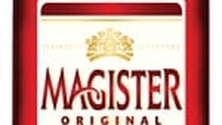 Magister 0,5l 22% Stock