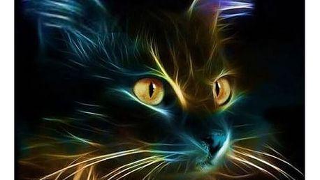 DIY kamínkový obraz - kočka