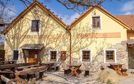 3–5denní pobyt pro 2 osoby s polopenzí a neomezeným vínem u Znojma v penzionu U Tří Jasanů