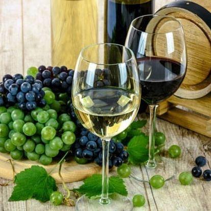 Jižní Morava s vínem a polopenzí - u Znojma