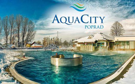Celodenní relax a koupání v Aquacity Poprad