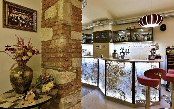 Restaurant Sova