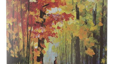 Obraz na stěnu - Procházka v lese