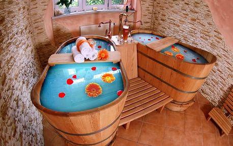 Hotel Excelsior, zimní Beskydy pro dva + polopenze, wellness