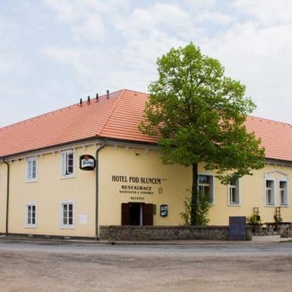 Střední Čechy, Třebíz: Wellness pobyt na 3-5 dní pro dva + polopenze, víno, vířivka, procedury