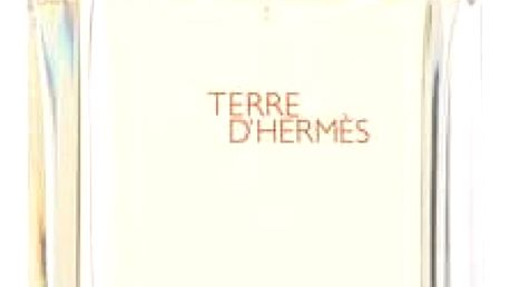 Hermes Terre D´Hermes 100 ml EDT M