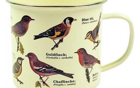 Plecháček - Ptáci