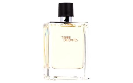 Hermes - Terre D 100ml Toaletní voda M