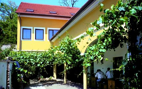 Vinařský pobyt u Znojma s neomezenou konzumací vína a polopenzí