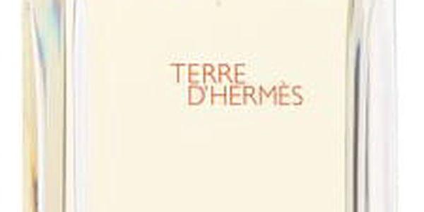 Hermes Terre D´Hermès 100 ml EDT M