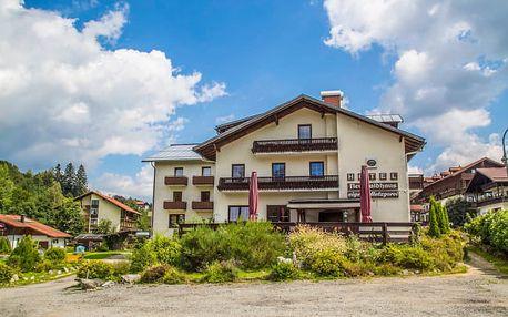 Slovenský hotel v Bavorsku s polopenzí