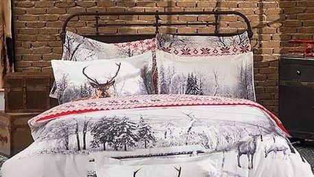 Haley home Povlečení Winter bavlna, 140 x 200 cm, 60 x 80 cm